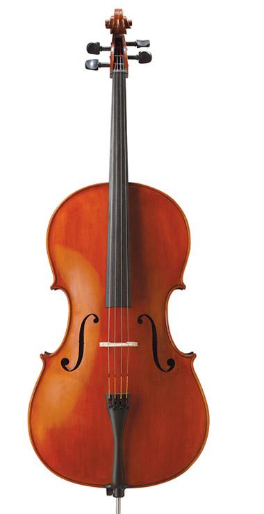 cello_13_10